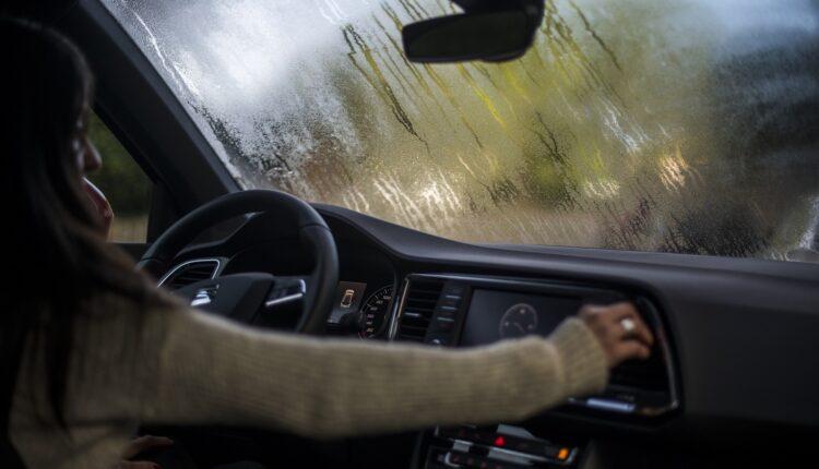 10 dicas para uma condução segura no Outono
